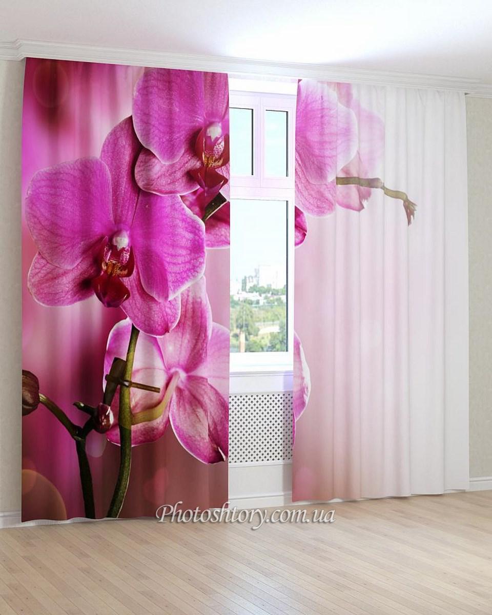 Фотошторы розовая- розовая орхидея