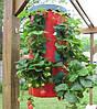 Плантатор для выращиваия клубники Topsy Turvy