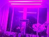 Фитолампа полного спектра 16Вт 120см SUNLIGHT (готовый фитосветильник)