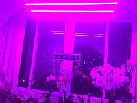 Фитолампа полного спектра 16Вт SUNLIGHT (готовый фитосветильник)