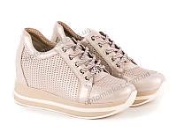Кроссовки женские Allshoes 136109