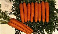 Семена Морковь Витаминная - TM Семена Украины - 20г