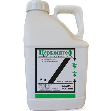Фунгицид Церкоштеф, дифеноконазол 250 г/л + карбендазим 250 г/л; свекла, пшеница, фото 2