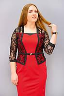 Шанталь. Оригінальне плаття великих розмірів червоний 50 52 54 56 58 60 62  64 мікродайвінг 4385d30bcdca3
