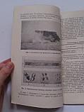 Егоров И. Воздухоочистители колесных и гусеничных машин. Воениздат 1956 год, фото 3