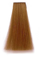 Premier Noir Крем-фарба для волосся 8.34 Світлий золотисто-мідний блонд, 100 мл