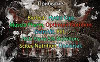 Поступление: BioTech, Hydra Cup, Muscle Pharm, Optimum Nutrition, OstroVit, PVL, Rich Piana 5% Nutrition, Scitec Nutrition, Universal.