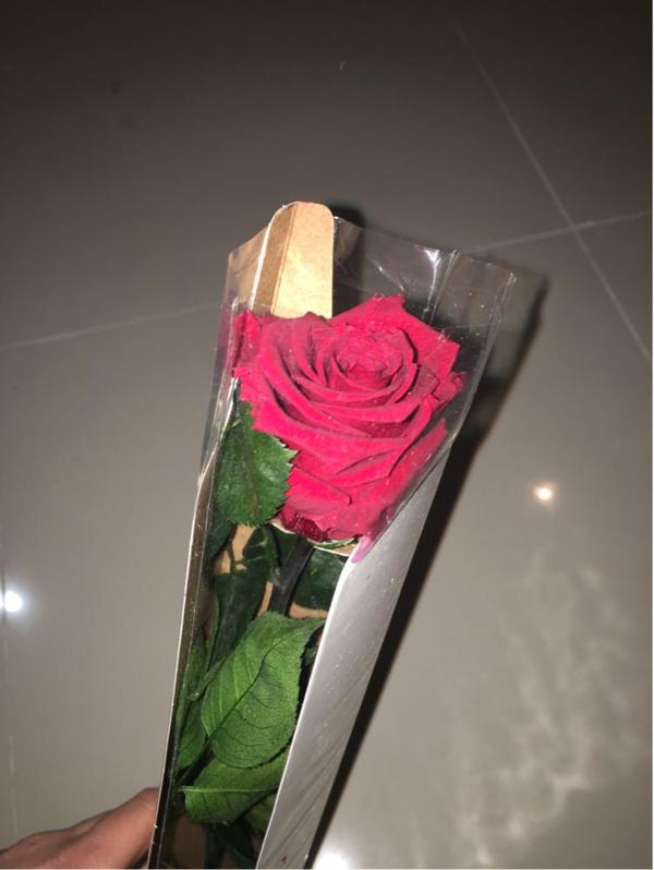 Роза стабилизированная Verdissimo Красная
