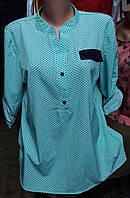 Женская блузка в горошек