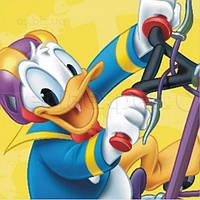Картина на холсте Disney Kaczor Donald (23 X 23)