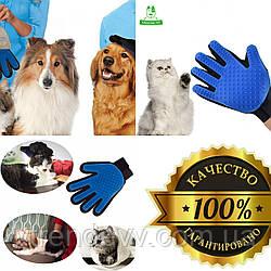 Перчатка для животных. ТОП