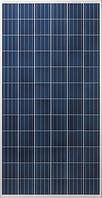 Солнечная батарея Risen Solar RSM72-6-310P (4BB)