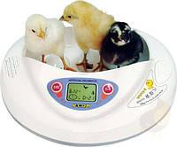 Завезены автоматические инкубаторы R-com (Ю.Корея) В наличии детские обучающие инкубаторы и для проф.птицеводов.