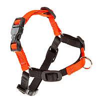 Шлея нейлоновая COACH P S/M Ferplast Ферпласт для дрессировки собак (синий, оранжевый)