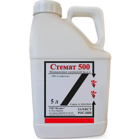 Гербіцид Стемат 500 аналог Нортрон 500 етофумезат, 500 г/л; для цукрових буряків, фото 2