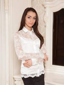 Блузки,сорочки