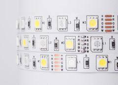Лента ЛЕД Премиум SMD5050 12В RGB+WW+CW (RGB+CCT) (цена за 1 метр) LS5050RGB+CCT MiLight