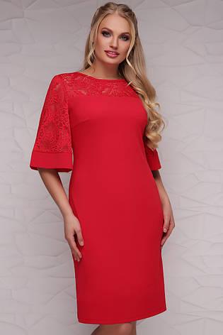 Нарядное красное женское платье футляр с кружевом сверху и на рукавах,  большие размеры Мирина- dc0aff6b1dc