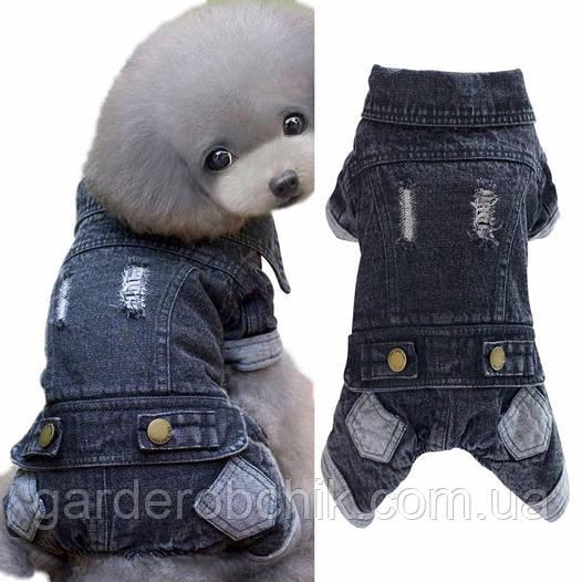 """Комбинезон джинсовый теплый """"Стиляга"""", толстовка для собаки. Одежда для собак"""