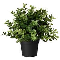 ФЕЙКА Искусственное растение в горшке, орегано, 22 см, 10375159, IKEA, ИКЕА, FEJKA
