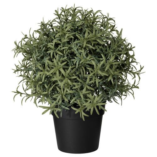 ФЕЙКА Искусственное растение в горшке, розмарин, 22 см, 90382113, IKEA, ИКЕА, FEJKA