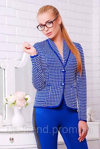Пиджак в стиле Шанель синего цвета