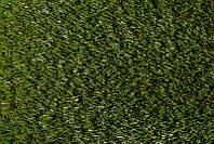 Искусственная трава Scenic