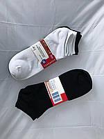 Мужские немецкие носки (качественные) бренда Albert Heijn (в пачке 5 шт)