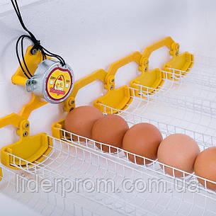 Инкубатор Теплуша ИБ 220/50 ТА 63 яйца автомат, вентилятор, ТЭН, фото 2