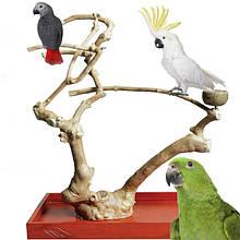 Игровые стенды, присады для попугая