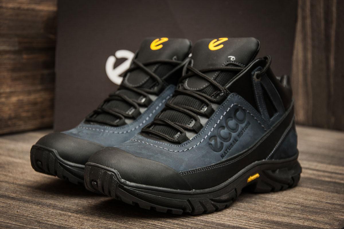 2278fbe9 Зимние мужские кроссовки Ecco Biom, 773838-1