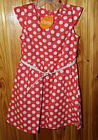 Сукня на дівчинку в горошок, розмір 104, 110