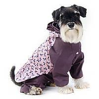 """Pet Fashion Дождевик для """"девочек"""" Келли, XS-2"""