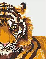 "Канц Набор, техн. акр. живопись по номерам ""Тигр"" RS /N0001340/"