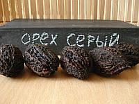 Орех серый семена для віращивания саженцев, горіх сірий насіння родственник грецкого