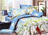 Семейный комплект постельного белья поликотон  JH3589