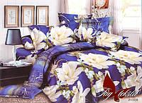 Семейный комплект постельного белья поликотон  JH3836