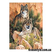 Алмазная вышивка Волки на скалах