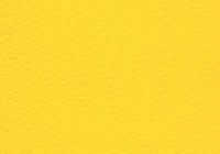 ПВХ покрытие для спортивного зала LG LEISURE 4 мм. желтый