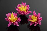 Цветок декоративный Lyonia, диаметр 3,5 см, цвет розовый с желтой серединой, фоамиран, декоративные цветы, цветы исскуственне для рукоделия