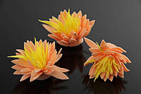 Цветок декоративный Melia, диаметр 3,5 см, фоамиран, цвет бежевый с желтой серединой, декоративные цветы, цветы исскуственне для рукоделия