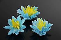 Цветок декоративный Nerine, диаметр 3,5 см, цвет голубой с желтой серединой, фоамиран, искуственные цветы, для декора