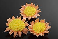Цветок декоративный Mucuna, диаметр 3,5 см, цвет бежевый с желтой серединой, фоамиран, искуственные цветы, для декора
