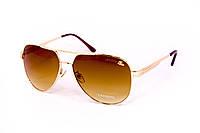 Мужские очки Lacoste