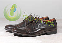 Кожаныемужские туфли VIVARO  785-2 , фото 1
