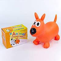 Попрыгун резиновый Собака BA-3004