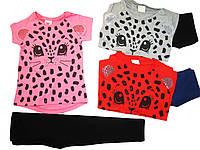 Комплект-двойка для девочки, размеры  98,104,110,122,128,Glostory, арт.GLT 1534