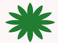 Красители пищевые сухие (Индия) Зелёный10г., фото 1