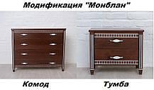 Тумба Монблан орех темный + патина серебро (Микс-Мебель TM), фото 2