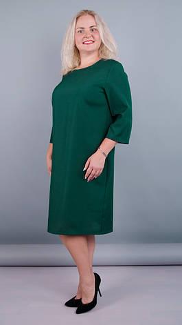 791191f0d95d9a Вірта. Жіноча повсяденна вільного крою сукня великих розмірів. Зелений  розміра 50 52 54 56